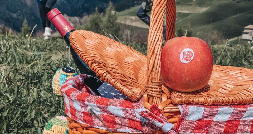 Festa della mamma: regaliamo un picnic!