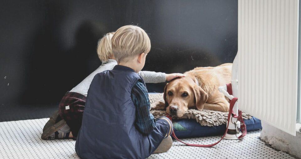 Cani e bambini: che fare quando arriva un cucciolo?